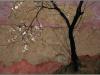 9151-flowering-plum-tree
