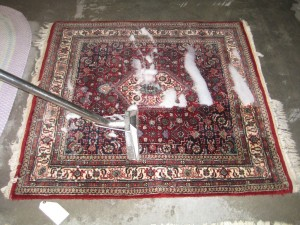 Professional Rug Cleaning extraction process