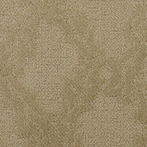 Masland Dumain cut and loop carpet
