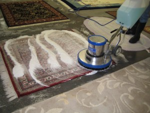 Rug Cleaning Stain Guard Hampton Roads